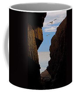Gulls Of Acadia Coffee Mug by Brent L Ander
