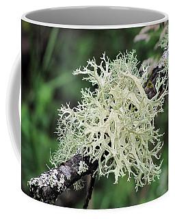 Coffee Mug featuring the photograph Harmony by I'ina Van Lawick