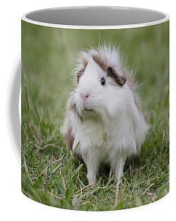 Have You Seen My Hairspray? Coffee Mug