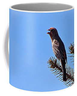 Coffee Mug featuring the photograph He Really Sings by Phyllis Kaltenbach