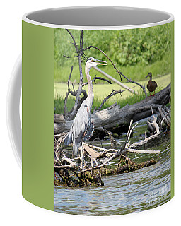 Coffee Mug featuring the photograph Heron And Mallard by Debbie Hart