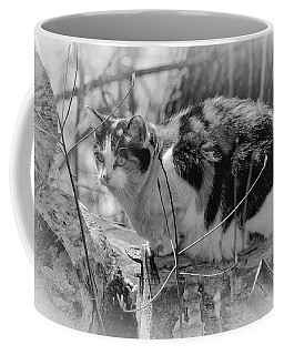 Coffee Mug featuring the photograph Hiding by Eunice Gibb