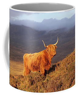 Highland Cattle Landscape Coffee Mug