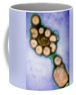 Hong Kong Flu Viruses Coffee Mug
