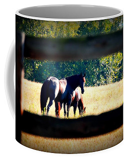 Coffee Mug featuring the photograph Horse Photography by Peggy Franz