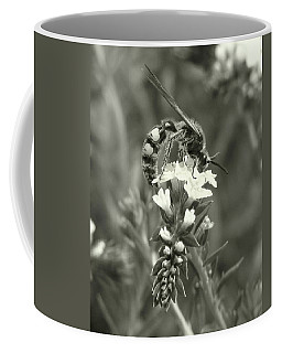 Hunter Wasp On Heliotrope Coffee Mug