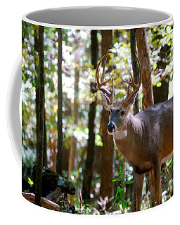 Coffee Mug featuring the photograph Hunters Dream 10 Point Buck by Peggy Franz