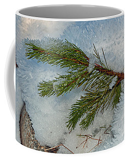 Coffee Mug featuring the photograph Ice Crystals And Pine Needles by Tikvah's Hope