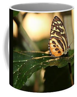 I'm Going Places Coffee Mug