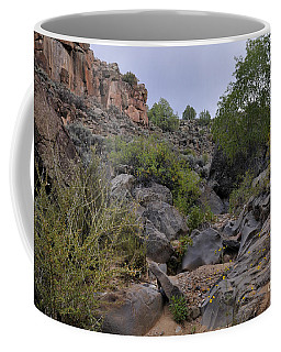 Coffee Mug featuring the photograph In The Arroyo   by Ron Cline