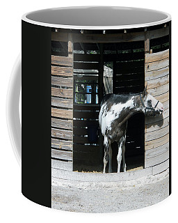 Is It Safe To Come Out Coffee Mug