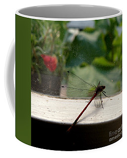 Coffee Mug featuring the photograph It's Always Greener by Lainie Wrightson