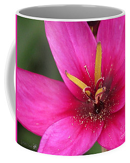 Coffee Mug featuring the photograph Ixia Named Venus by J McCombie