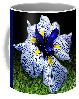 Japanese Iris Ensata - Botanical Wall Art Coffee Mug