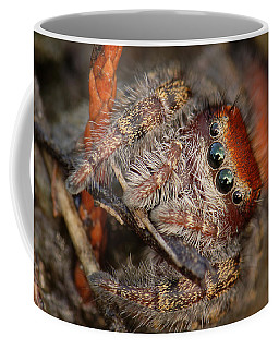 Jumping Spider Portrait Coffee Mug