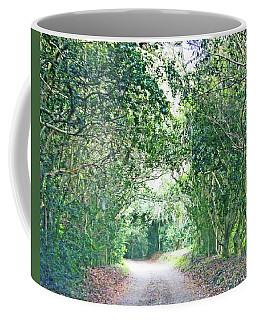 Coffee Mug featuring the photograph Jungle Drive Avery Island La by Lizi Beard-Ward