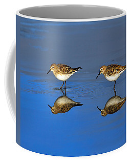 Juvenile White-rumped Sandpipers Coffee Mug