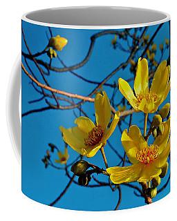 Kapok Flower Coffee Mug