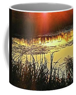 Coffee Mug featuring the photograph Lacassine Sundown by Lizi Beard-Ward