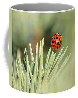 Coffee Mug featuring the photograph Lady Beetle On A Needle by Penny Meyers
