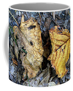 Leaf Study Coffee Mug