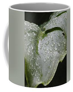 Coffee Mug featuring the photograph Leafy Greens by Tiffany Erdman