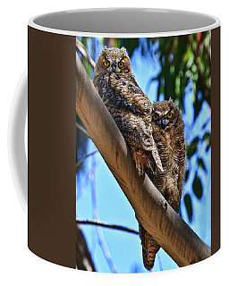 Lifes A Hoot Coffee Mug