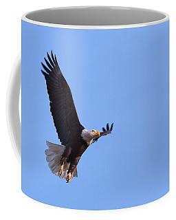 Coffee Mug featuring the photograph Lift by Jim Garrison
