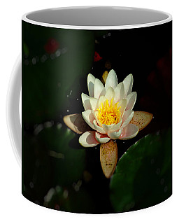 Lilly Coffee Mug by Tom Bush IV