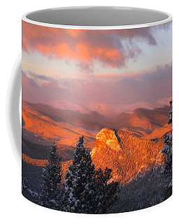 Coffee Mug featuring the photograph Lion's Head II by Angelique Olin