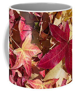 Liquidambar Autumn Coffee Mug