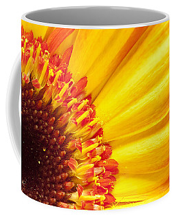 Coffee Mug featuring the photograph Little Bit Of Sunshine by Eunice Gibb