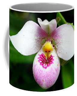 Little White And Pink Orchid Coffee Mug