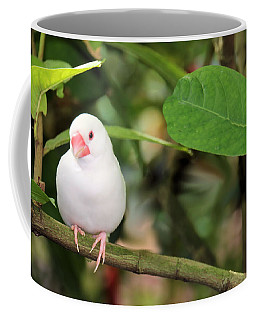Little White Bird Coffee Mug by Rosalie Scanlon