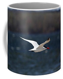 Coffee Mug featuring the photograph Long Haul Flight by Ramabhadran Thirupattur