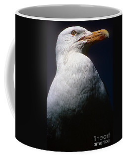 Long Island Seagull Coffee Mug