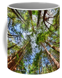 Coffee Mug featuring the photograph Look To The Sky by Beth Sargent