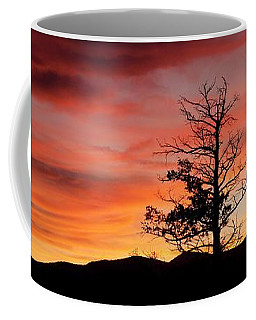 Coffee Mug featuring the photograph Lookin' Out My Front Door by Angelique Olin