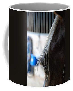 Coffee Mug featuring the photograph Looking Forward by Jennifer Ancker