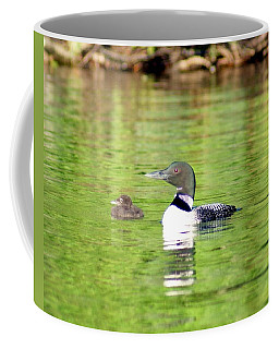 Loons Big And Small Coffee Mug by Steven Clipperton
