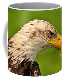Lord Of The Wings Coffee Mug