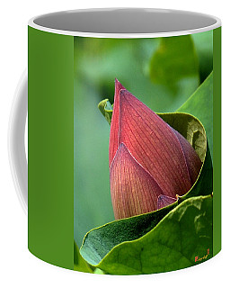 Lotus Bud--bud In A Blanket Dl049 Coffee Mug