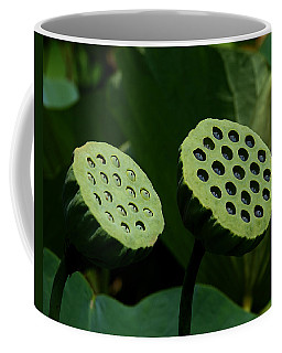 Lotus Capsules-sun Worshipers Dl052 Coffee Mug