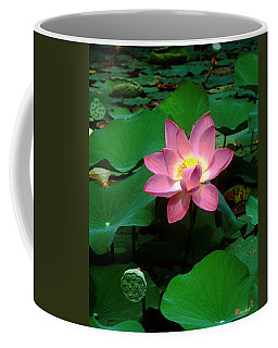 Lotus Flower And Capsule 24a Coffee Mug