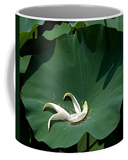 Lotus Leaf--castoff IIi Dl060 Coffee Mug
