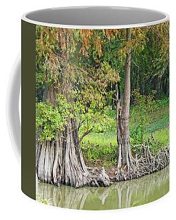 Coffee Mug featuring the photograph Louisiana Cypress by Lizi Beard-Ward