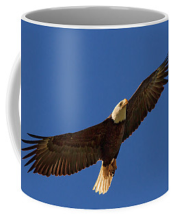 Coffee Mug featuring the photograph Majestic Bald Eagle by Beth Sargent