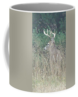 Majestic Buck Coffee Mug