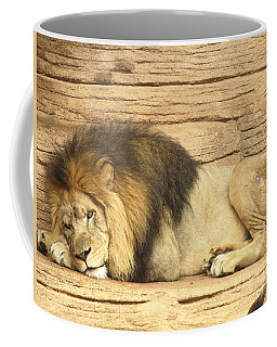 Male Lion Resting Coffee Mug