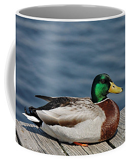 Mallard Profile Coffee Mug